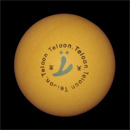 table_tennis_ball_Teloon40++orange_kl.jpg